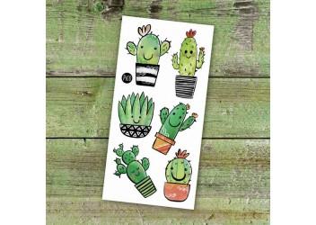 Les cactus coquins